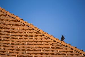 Lakáshitelből a tetőt is lecserélhetjük